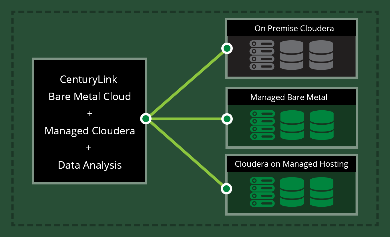 Big Data as a Service from CenturyLink