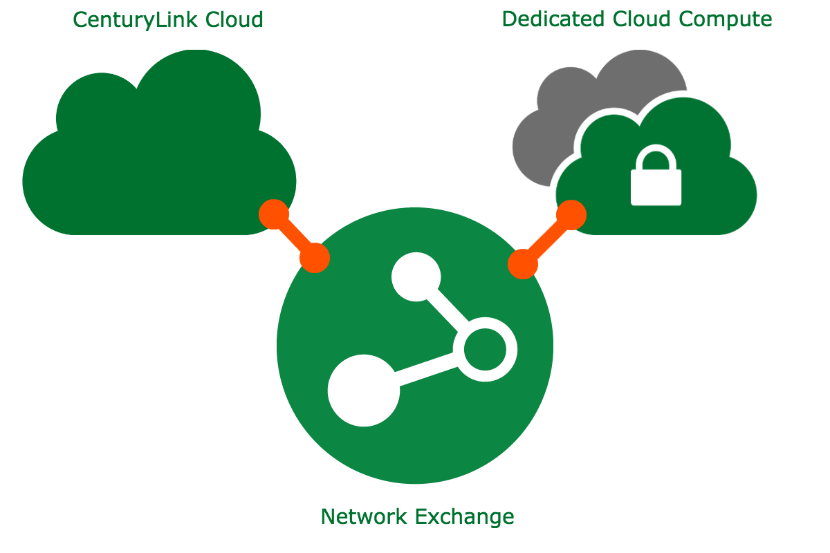 NetX provides secure, private networks for hybrid IT.