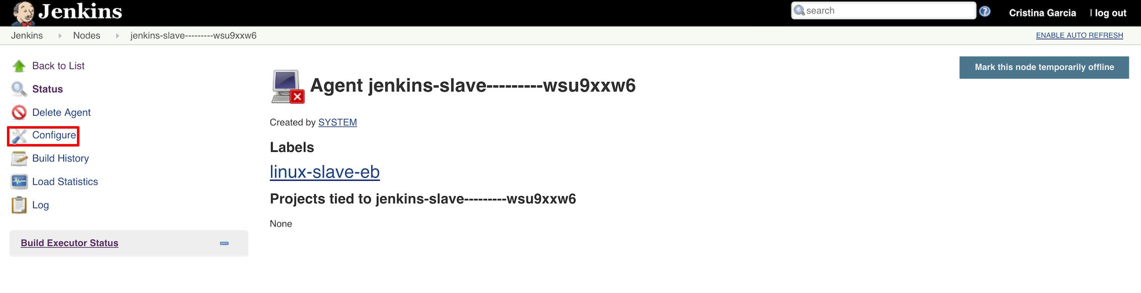jenkins-slave-info