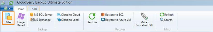Cloudberry Ultimate - file level backup