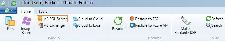 Cloudberry Ultimate - MS SQL Server