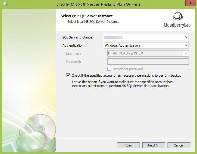 Cloudberry Ultimate - select instance to backup